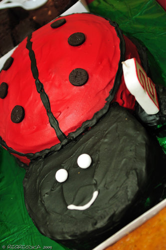 lady bug cake by mom & grandma